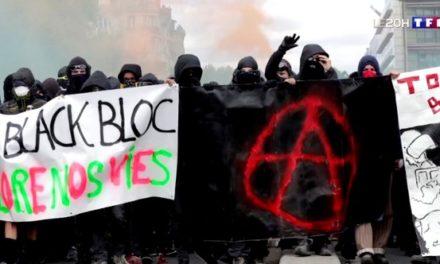 Black blocs: des activistes bien organisés